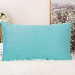 2 for $35 - Seafoam Green Velvet Lumbar Pillow